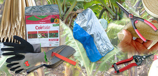 Plant Growing Products - for more info go to planterbags.com.au