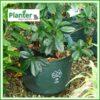25 litre Woven Planter Bags - for more info go to PlanterBags.com.au