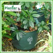 Woven-25-litre-Plant-Growbags-4