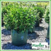 Woven-75-litre-Plant-Growbags-3