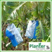Banana-Bunch-cover-bag-blue-1