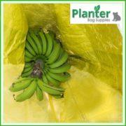 Banana-Bunch-cover-bag-yellow-221