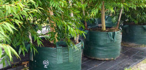 Woven Planter Bags Category Picture - for more info go to planterbags.com.au