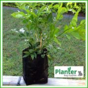 Poly-1-litre-Plant-Growbags-3