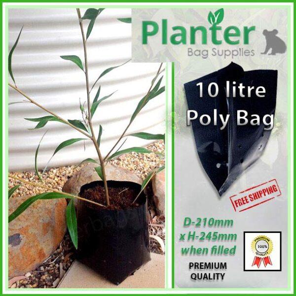 10 litre Standard Planter Bags - Polyethylene Growbags - for more info go to PlanterBags.com.au