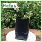 Poly-2-litre-Plant-Growbags-2