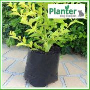 Poly-2.5-litre-Plant-Growbags-2