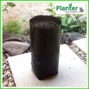 Poly-2.8-litre-Tall-Plant-Growbags-2