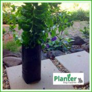 Poly-2.8-litre-Tall-Plant-Growbags-3