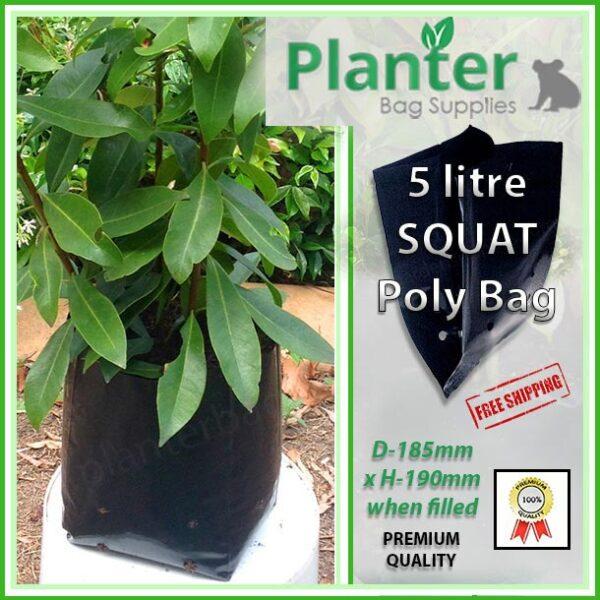 5 litre Squat Planter Bags - Polyethylene Growbags - for more info go to PlanterBags.com.au