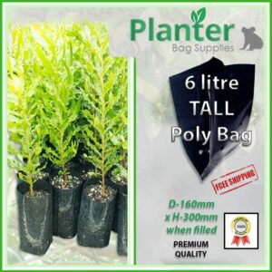 6 litre Tall Planter Bags - Polyethylene Growbags - for more info go to PlanterBags.com.au