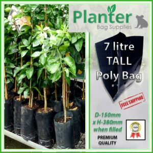 7 litre Tall Planter Bags - Polyethylene Growbags - for more info go to PlanterBags.com.au