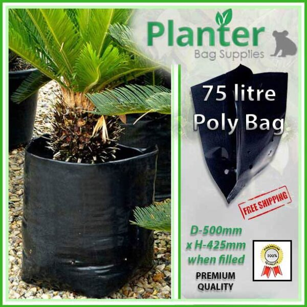 75 litre Planter Bags - Polyethylene Growbags - for more info go to PlanterBags.com.au