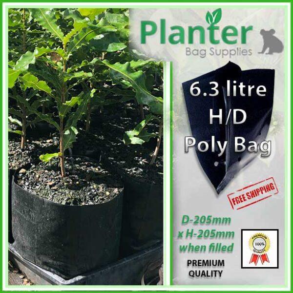 6.3 litre Premium Poly Macadamia Planter Bags at planterbags.com.au